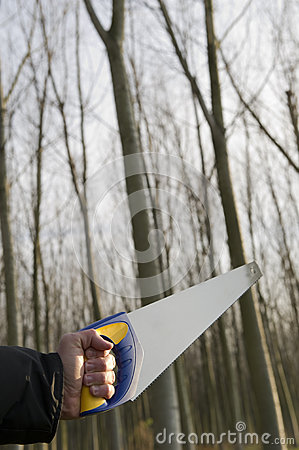 Man with saws