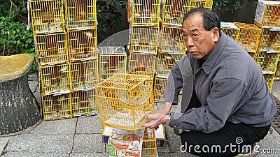 Man Selling Birds at Hong Kong Bird Market Editorial Photo