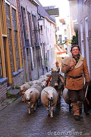 Man and sheep in the street Editorial Stock Photo