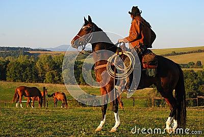 Man sitting on his horse