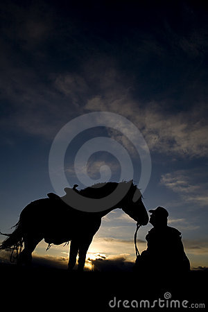 Man sitting by horse