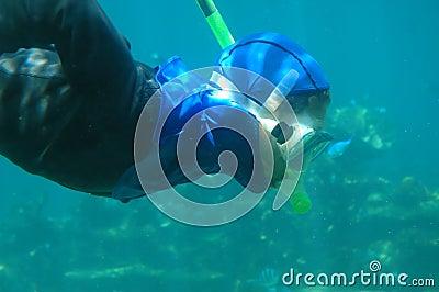 A man snorkeling underwater