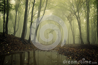 Man standing in a green forest with fog and trees