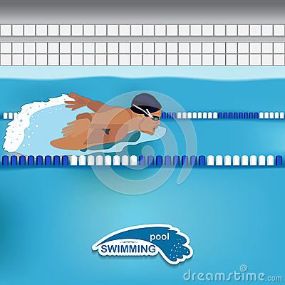 Man Is Swimming In The Pool Stock Vector Image 49664200