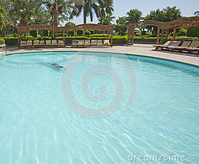 Man swimming in a tropical hotel pool