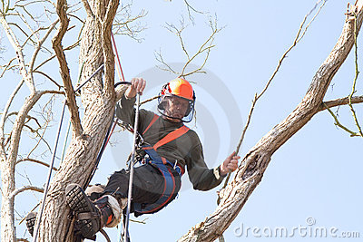 Man swinging from safety harness