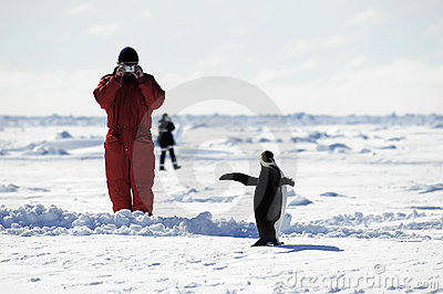 Man taking penguin pictures