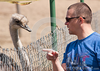 Man Talking to an Ostrich