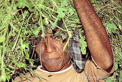 Man from Timor carrying plants after harvest Editorial Image