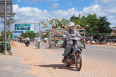 Man transports coconuts on a motobike Editorial Stock Image