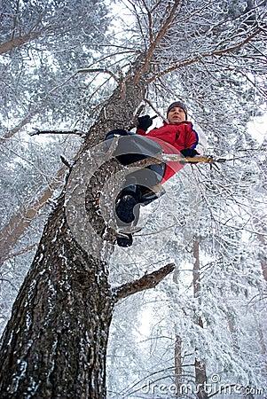 Man on tree