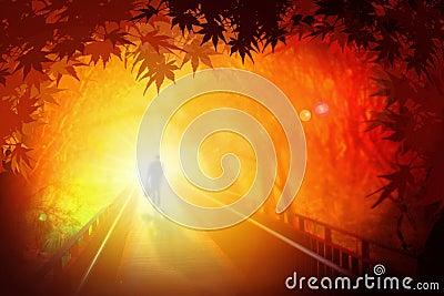 Man walking on bridge under Autumn leaves