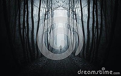 Man walking on a dark path in a strange dark forest with fog