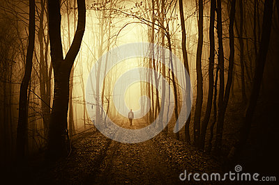 Man walking in a eerie dark and abstract forest with fog in autumn