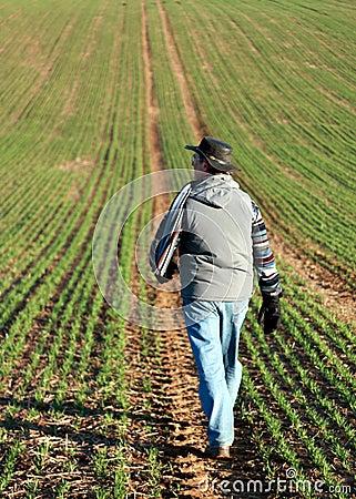 Man walking through a green field in England