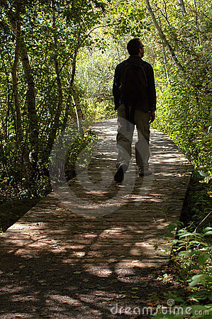 Free Man Walking In Forest Stock Photo - 1293490
