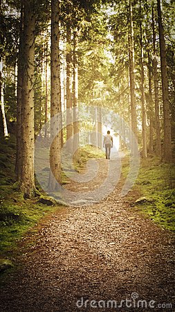 Free Man Walking Up Path Towards The Light In Magic Forest. Stock Image - 104747421