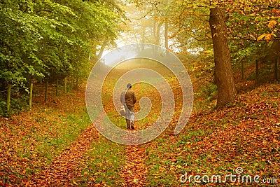 Man walking through woodland