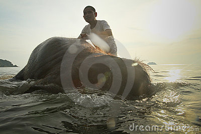A man washes his elephant on Ko Chang island Editorial Photo