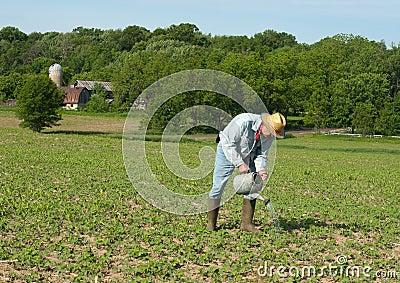 Man watering crops