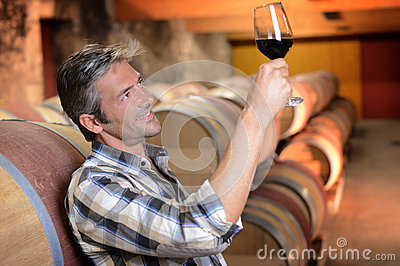 Man in wine cellar