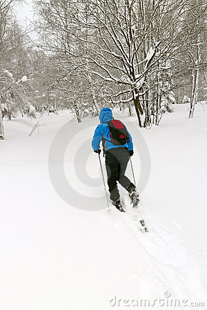 Free Man With Snowshoes Stock Photos - 17579003