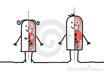 Man & woman anatomy