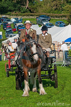 Man and woman in horse and carriage Editorial Stock Image