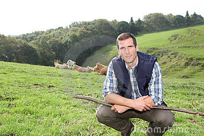 Man working in field with cattle