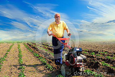 Man works in the field