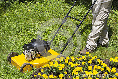 Man with yellow lawn mower