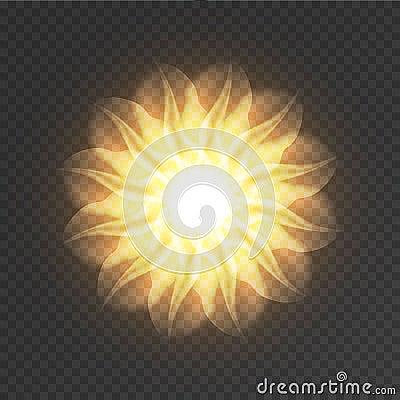 Mandala. Sacred geometry. Flower of life. Vector Illustration