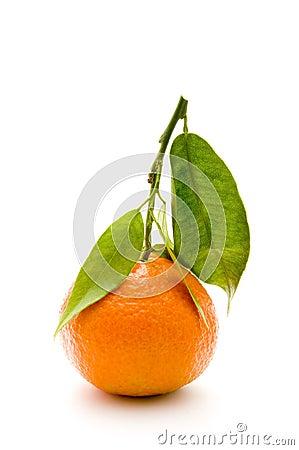 mandarin with branch