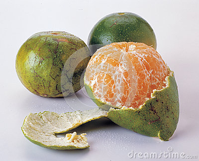 Mandarin citrus