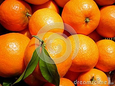 La Mandarine - hotelroomsearch.net