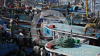 MANGALORE, LA INDIA -2011: Pescadores que transfieren la captura de pescados del mar a los camiones en octubre metrajes