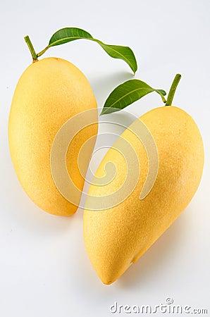 Free Mango Stock Image - 22504731