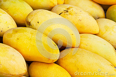 Mango fruits on the local market stand
