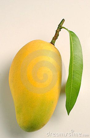 Mango and leaf