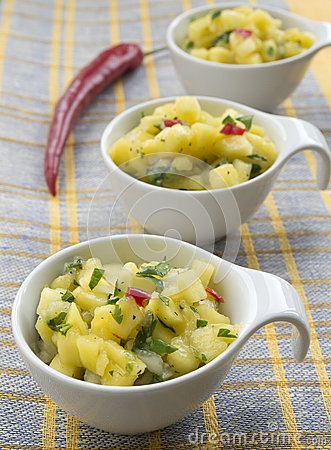 Free Mango Salsa Stock Images - 27058374