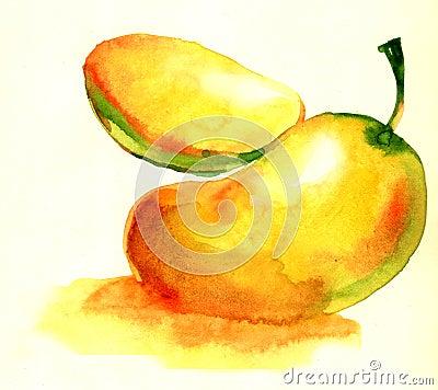 Mango with section illustration isolated