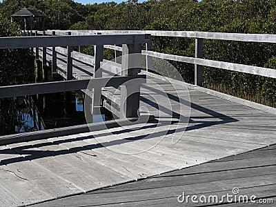 Mangrove boardwalk Stock Photo