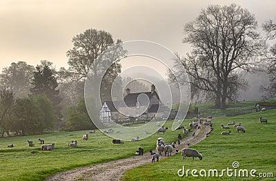 Manhã de Gloucestershire