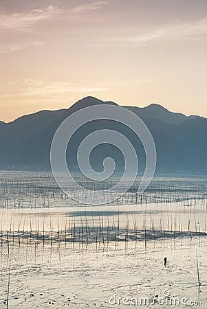 Manhã rasa dos mares e dos tidelands de Siapu Foto Editorial