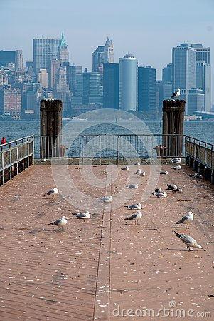 Free Manhattan, Look Of Liberty Iceland Royalty Free Stock Photo - 131048455