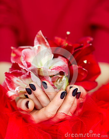 Free Manicured Cupped Hands Holding Flowers Stock Photos - 28893873