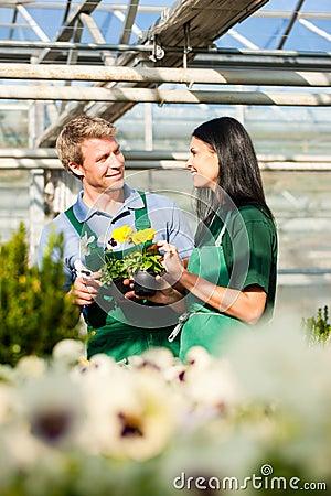 Manlig och kvinnlig blomsterhandlare eller trädgårdsmästare i blomsterhandel eller barnkammare