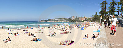 Manly Beach Panorama Editorial Photo