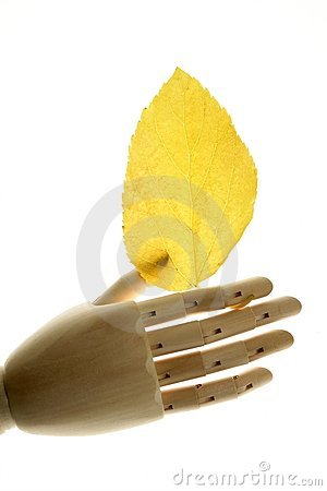 Mannequin wooden hand holding autumn yellow leaves