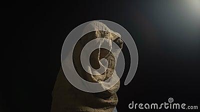 Mannetje in robe die uit duisternis komen en aan camera, god kijken die, evangelie zegenen stock video
